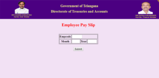 Telangana Employees, Pensioners get Festival Advance Know at @treasury.telangana.gov.in