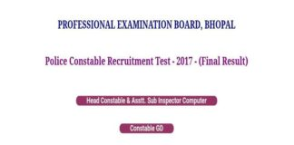 MPPEB 2017-18 Police Final Results, Merit List Released at vyapam.nic.in