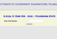 Telangana D.El.Ed 2nd Year Results Declared, Check 2016-18 Batch Results