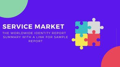 Service market Report Summary